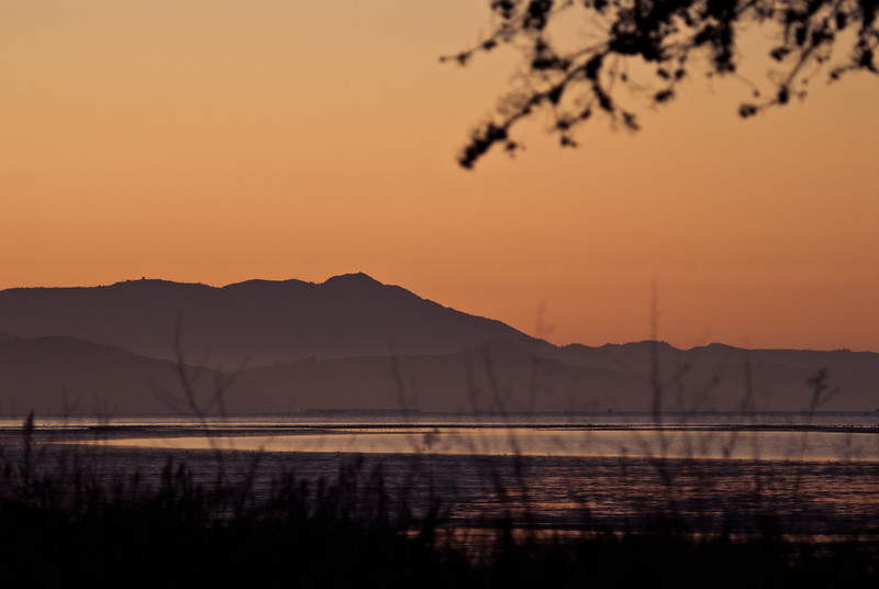 From Mclaughlin Eastshore State Park, Emeryville.