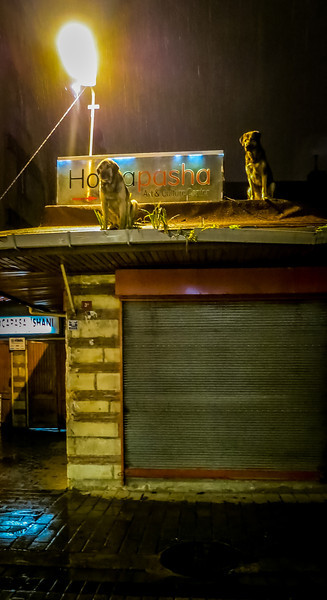 Uganda_GNorton_03-2013-306.jpg