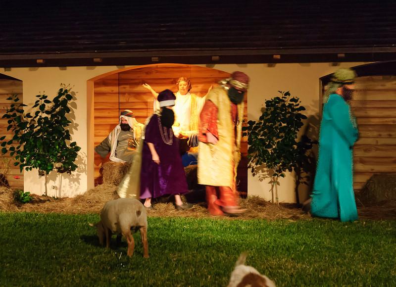 Nativity2007-7.JPG