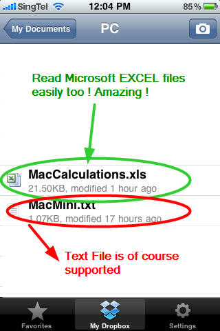 MICROSOFT EXCEL 2007 file DropBox in iPhone