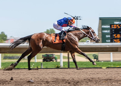 Canterbury Park races featuring the Running of the Bulldogs on May 26, 2019. Photo by Matt Blewett/Matte B Photography | matt@mattebphoto.com.