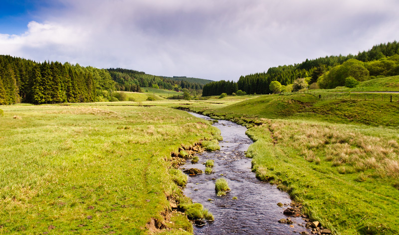 River Tyne in Kielder Forest