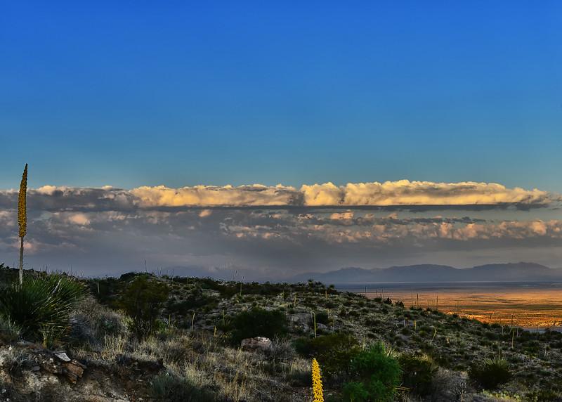 NEA_3371-7x5-Morning Light.jpg