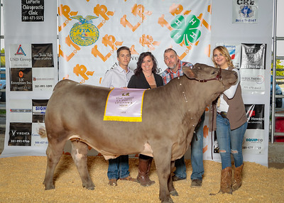 42nd ANNUAL LIVESTOCK SHOW - THURSDAY, APRIL 19