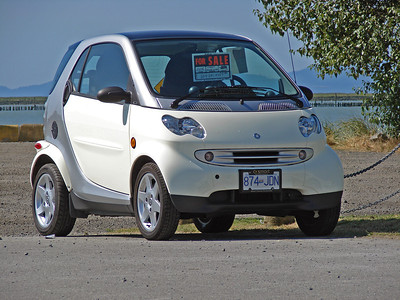 Spotted Smart Cars