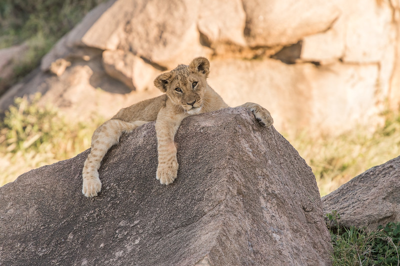 Tanzania_Feb_2018-608.jpg