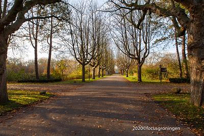 Begraafplaats Selwerderhof
