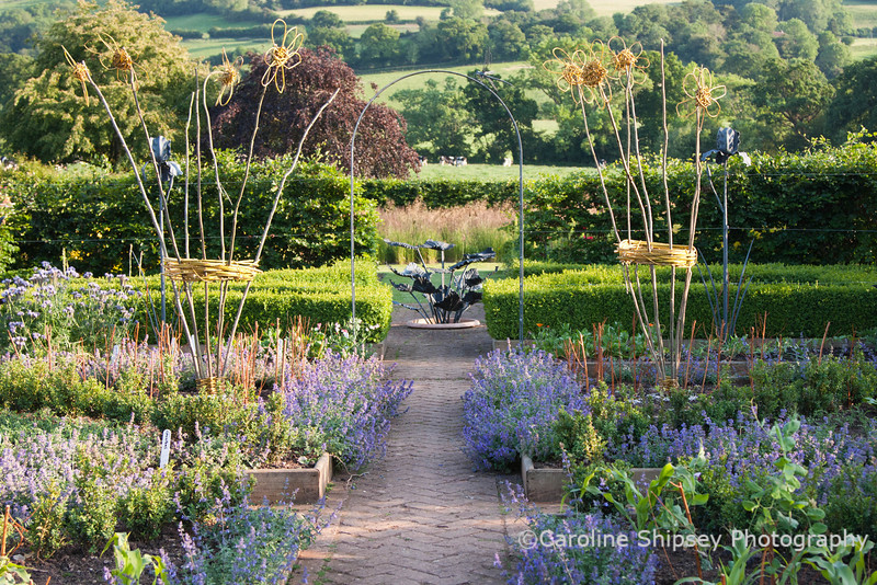The Organic Gardens, Holt Farm-2211.jpg