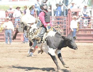 Steer Riding - Section 1