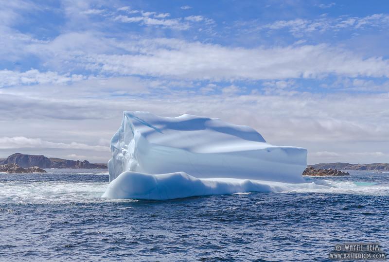 Iceberg 57    Photography by Wayne Heim