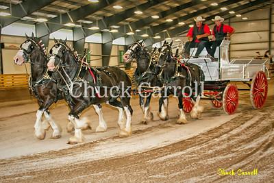 Draft Horse Show - Grange Fair - Friday August 24, 2012