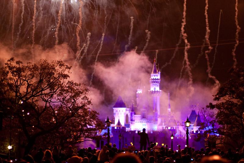 2010 - Jan - 18-24 - Family Disneyland Trip-0013