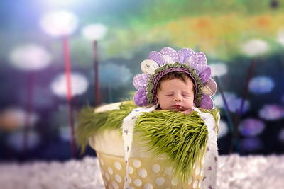 Holly-Eva - Newborn