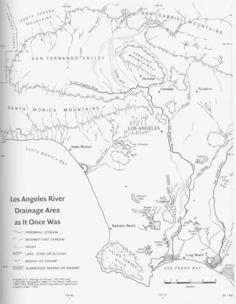 LA River Natural Drainage