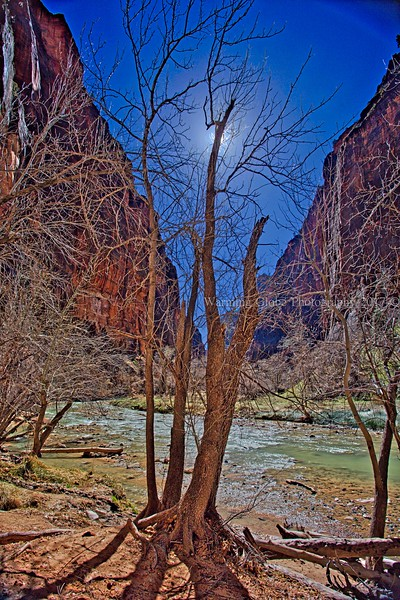 facebook post  LR UTAH zion 2017  LR  2S5A3565_HDR_edit.jpg