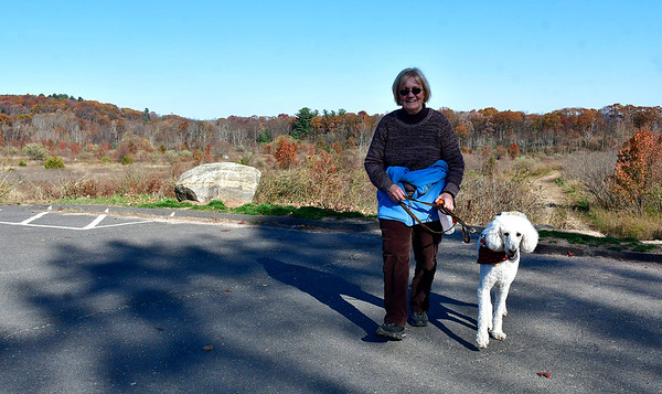 11/6/2019 Mike Orazzi | Staff Linda Martinelli while walking her daughter Caryn's dog Cricket off Perkins Street in Bristol on Wednesday.
