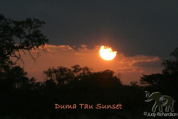 Botswana-Duma Tau-Scenery