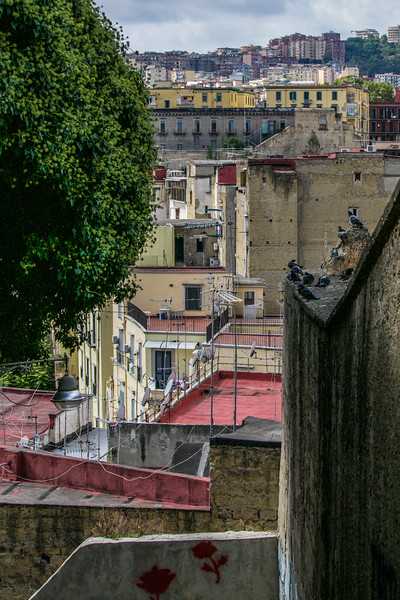 Naples Roof Tops