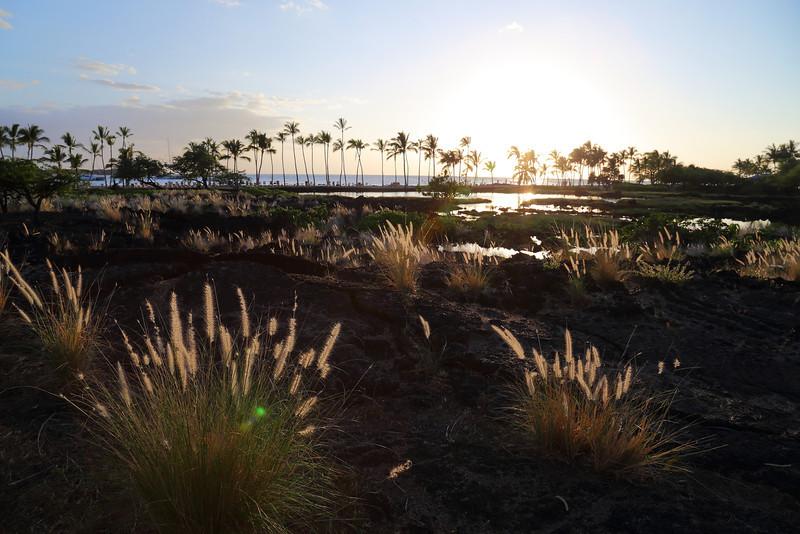 Big Island 02.JPG