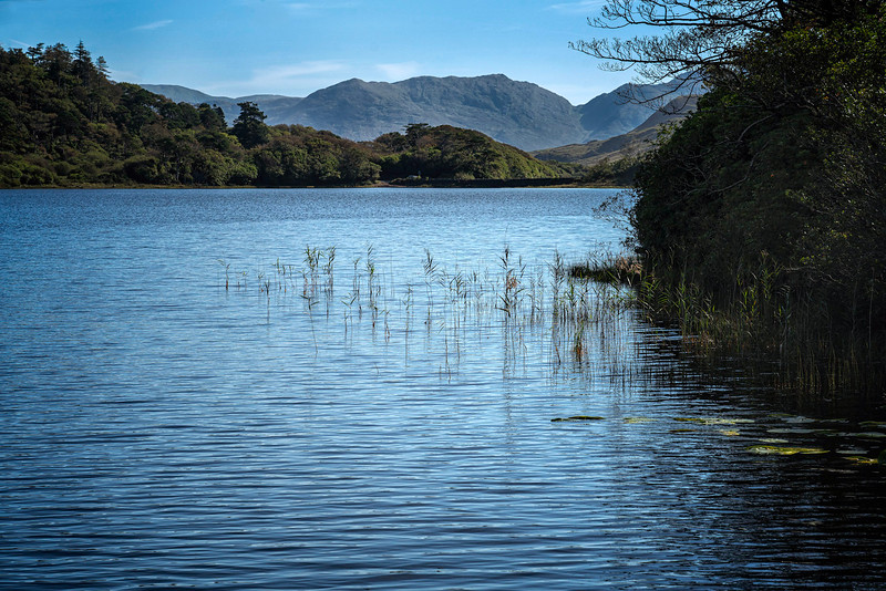 2019-09Sep-Ireland-Connamora-678-Edit.jpg