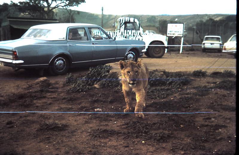 1973-4 (4) Open Zoo @ Bacchus Marsh.JPG