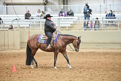 Novis Amature Horsemanship