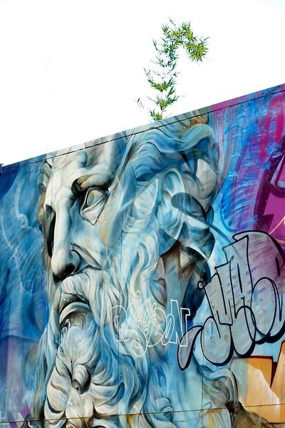 Wynwood walls - Miami - Florida