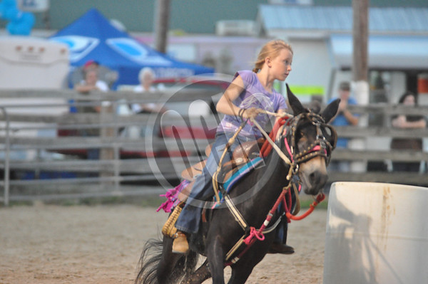 2012 Overton County Fair