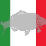 WCC-flag-Italy-240x160.jpg