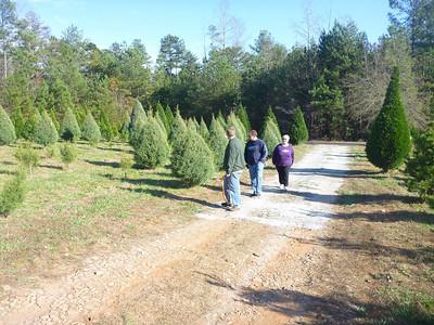 11-29 - Christmas Tree Cutting - Powder Springs, GA