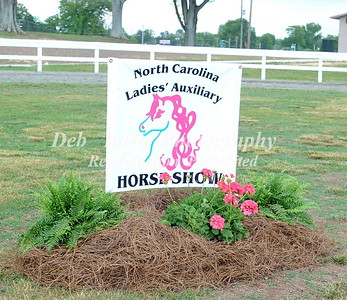 2016 NORTH CAROLINA LADIES AUXILIARY-WALKING FOR THE CHILDREN 5-14-16-DALLAS  NC