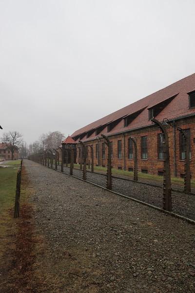 Auschwitz -Birkenau3.JPG