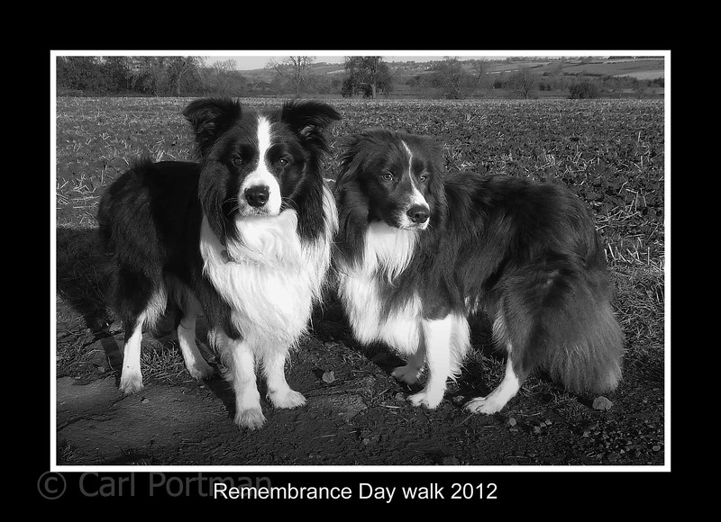 a remembrance day walk 2012.jpg