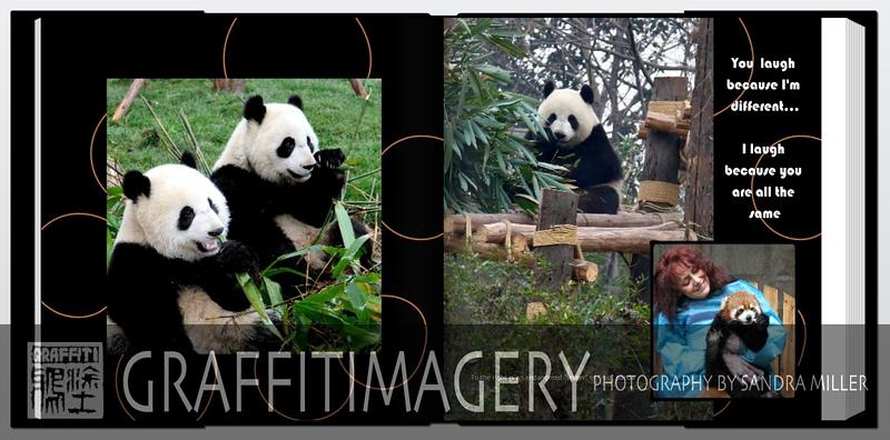 Screen shot 2010-09-23 at 2.22.25 PM.png