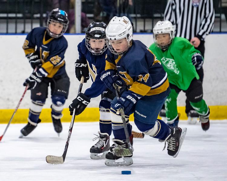 2019-02-03-Ryan-Naughton-Hockey-76.jpg