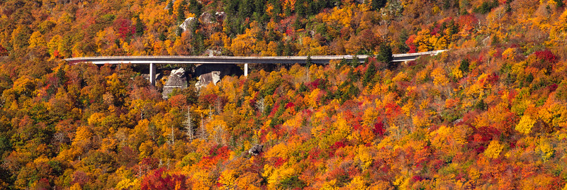 Linn Cove Viaduct Fall Colors