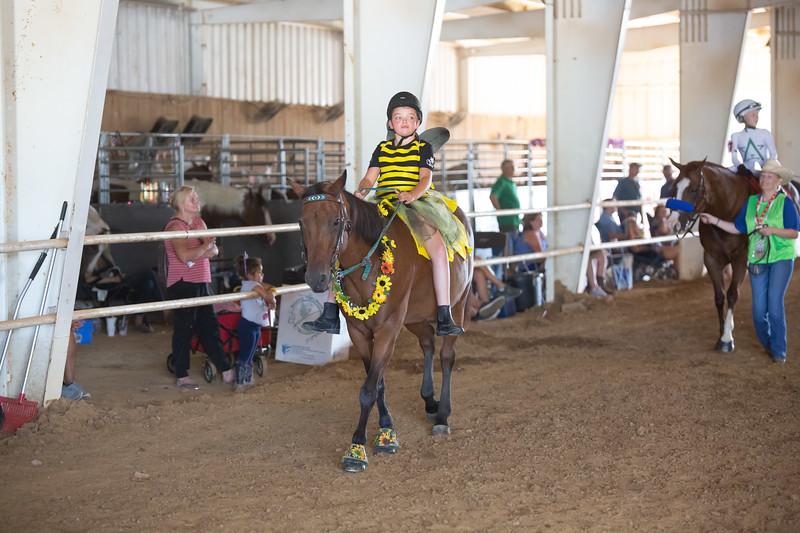 HorseCostume-14.jpg