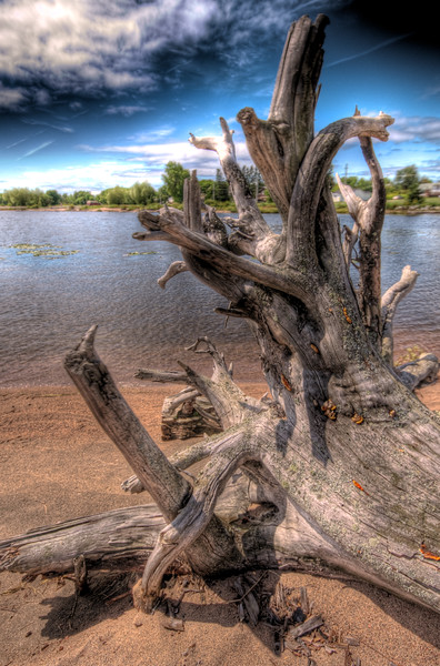 This piece of driftwood at  Thessalon on the North Channel of Lake Huron just really grabbed me. I took a lot of photos of it, but it wasn't until I got home and could really play with it that I got the exact settings and tone I wanted. 3 exposure HDR.