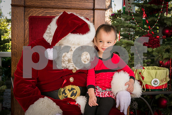 Sat.Dec. 22,  2012 Rogers Gardens