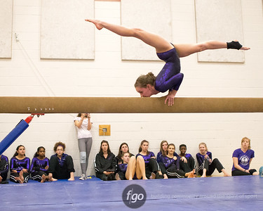 12-2-15 Gymnastics - Minneapolis South/Roosevelt and Southwest v St. Paul Highland Park and Como Park