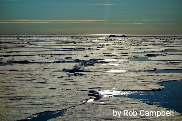 Rob's Svalbard Archipelago Photos
