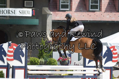$2,400 M&S/NAL/WIHS Low Child/Adult Jumper Classic