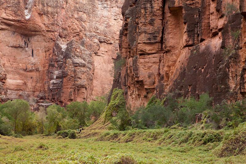 Grand Canyon October-0490.jpg