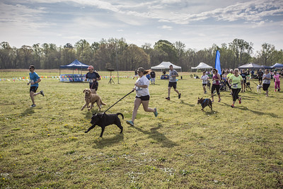 Hanover Hounds K9 Hero Day April 18, 2015