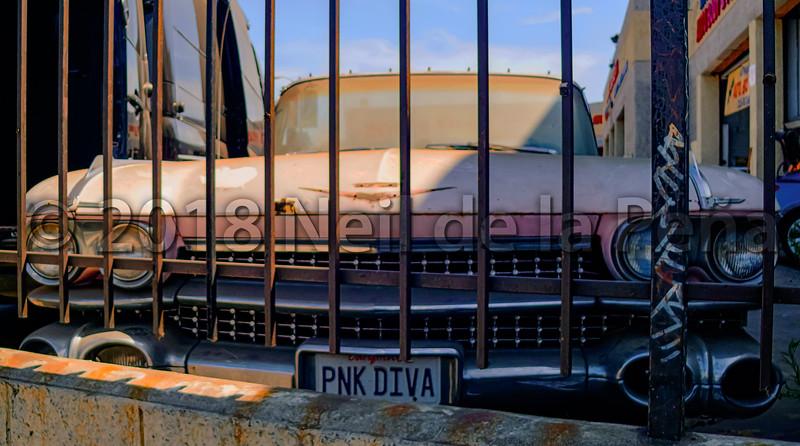 The Pnk Diva