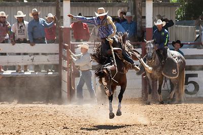 2017 San Benito County Horse & Saddle Show