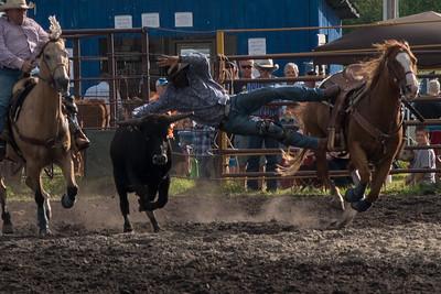 Steer Wrestling Friday 2015