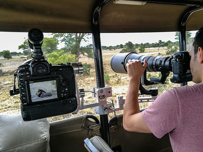 Photo Safaris in Kruger National Park