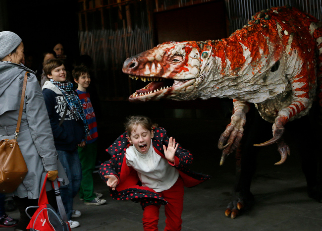 Description of . Children react as a carnivorous theropod known as the Australovenator dinosaur walks through crowds along the Southbank, in London, Monday, Feb. 18, 2013. The dinosaur is one of many that can be visited at the Erth's Dinosaur Petting Zoo, visiting from Australia, the creatures can be touched and fed at the Southbank Centre. (AP Photo/Kirsty Wigglesworth)