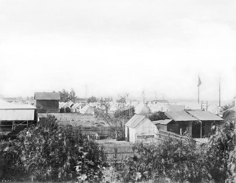 Drum Bararcks Wilmington Encampment (U.S. Army Headquarters), showing tents, Los Angeles, ca.1865